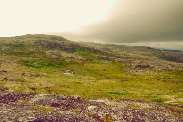 krajobraz tundry