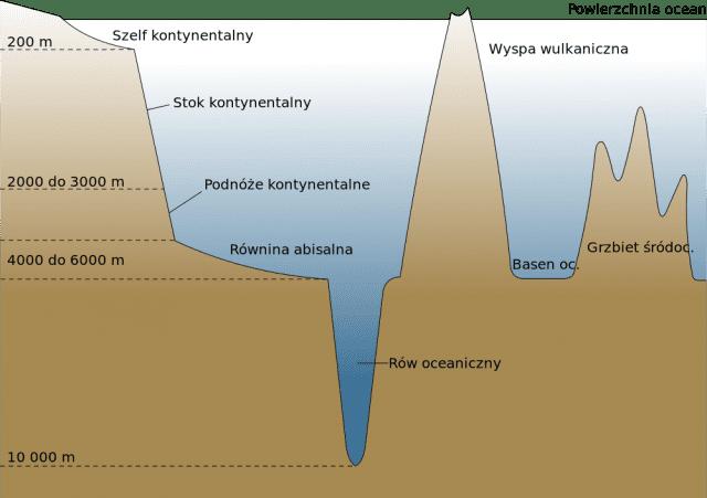 Formy ukształtowania dna oceanicznego
