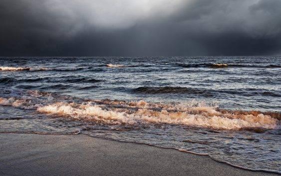 Ekosystem Morza Bałtyckiego