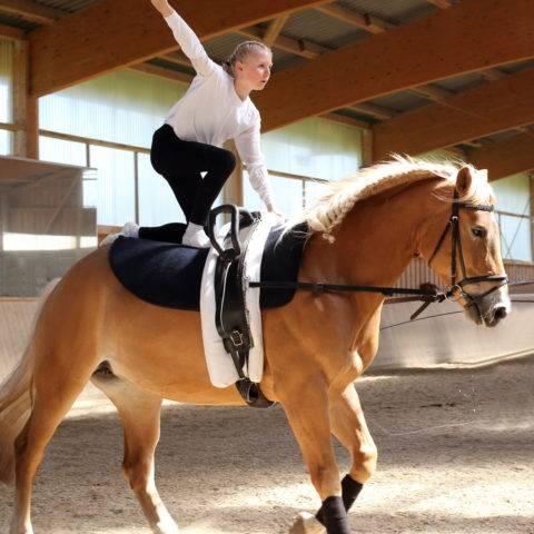 sporty konne mniej znane woltyżerka