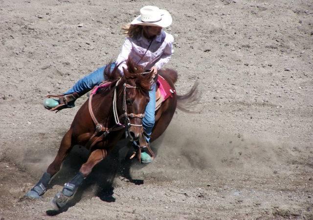 Sporty konne mniej znane jazda western
