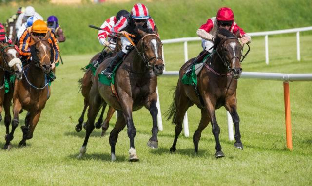 popularne sporty konne ty wyścigi konne