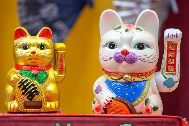 Ciekawostki o kotach maskotka Japonii