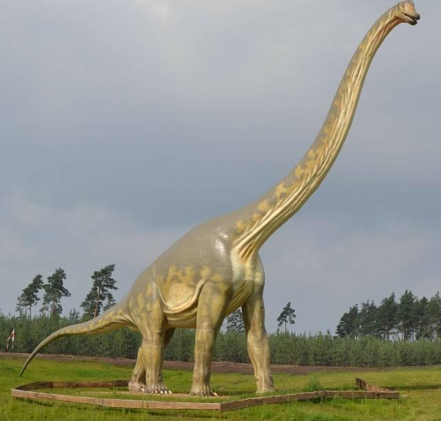 największy dinozaur