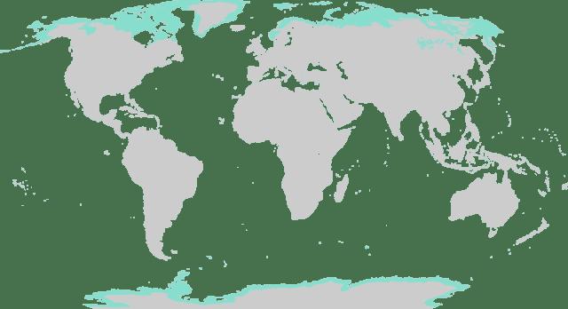 Tundra na mapie świata