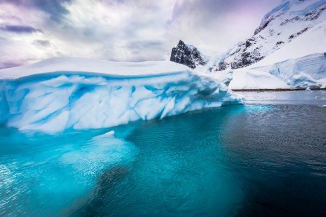 wody Andvord Bay na Antarktydzie