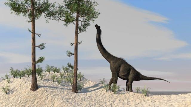 wymarły dinozaur
