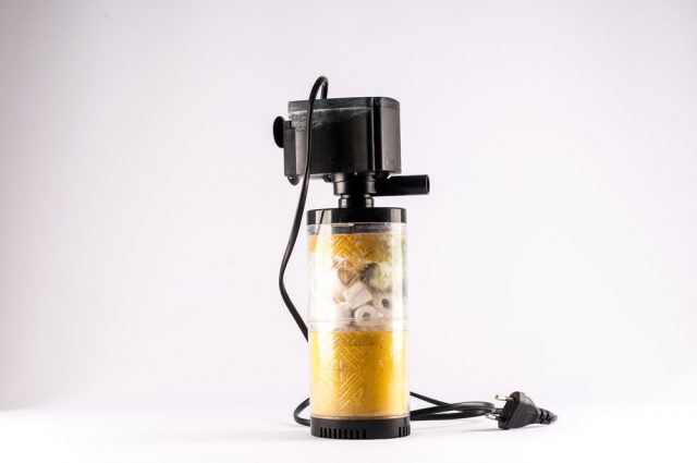 jak czyścić filtr w akwarium