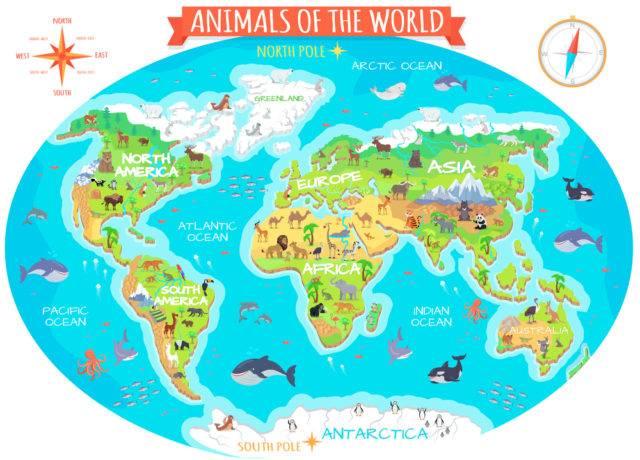 zwierzęta według kontynentów i regionów Ziemi