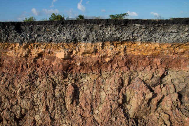 typ gleby i jej profil