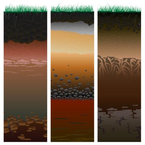 rodzaje gleb