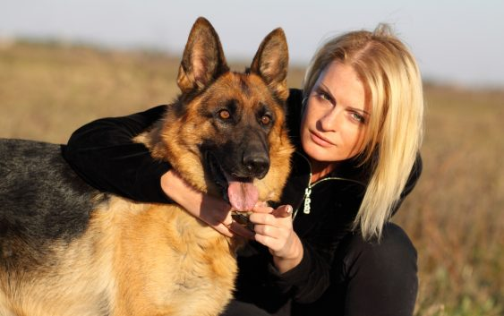 Rasy psów obronnych