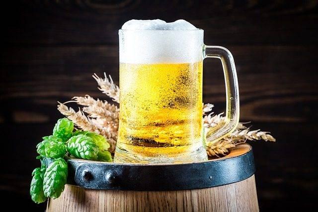 piwo ekologiczny środek do walki ze ślimakami