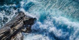 Okrzemki rola w oceanie