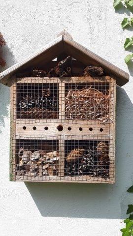 domki dla owadów pożytecznych
